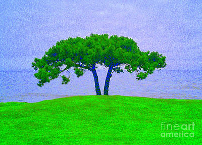 Photograph - Green Tree by Bob Brents