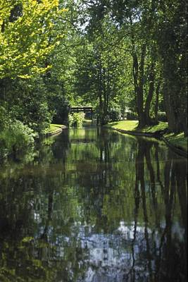 Green Trees Reflected In River Water Art Print by Gillham Studios