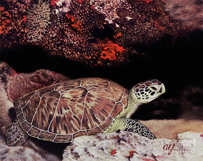Painting - Green Turtle by Alan Feldmesser