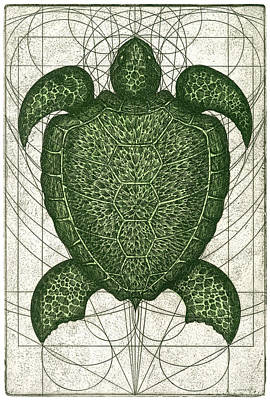 Ocean Turtle Mixed Media - Green Turtle by Charles Harden