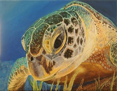 Green Sea Turtle Painting - Green Turtle by Connie Campbell Rosenthal
