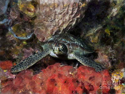 Green Turtle Resting On Coral Original by Sergey Lukashin