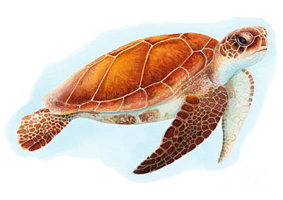 Painting - Green Turtle by Tanya Tyrer