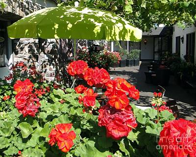 Photograph - Green Umbrella In Rudesheim by Barbie Corbett-Newmin