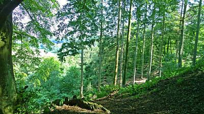 Photograph - Green Valley by Anne Kotan