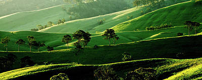 Country Scenes Photograph - Green Valley by Az Jackson