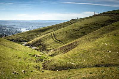 Green Valley Pastures Art Print