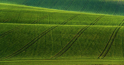 Photograph - Green Waves Of Rolling Hills by Jenny Rainbow