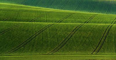 Green Waves Of Rolling Hills Art Print