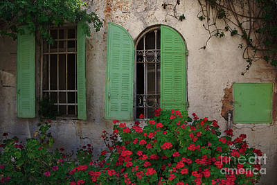 Photograph - Green Windows And Red Geranium Flowers by Yair Karelic