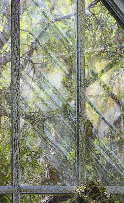 Green Windows Art Print