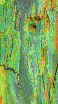 Photograph - Green Wood Bark Abstract by Bruce Pritchett
