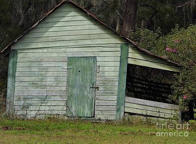 Photograph - Green Wooden Shed by D Hackett