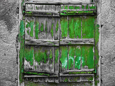 Photograph - Green Wooden Shutters by Rae Tucker