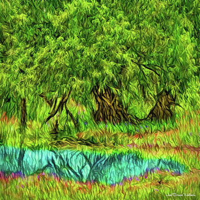 Digital Art - Green Woods Reflection Pond - Boulder County Colorado by Joel Bruce Wallach