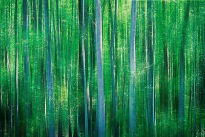 Photograph - Green World by Van Sutherland
