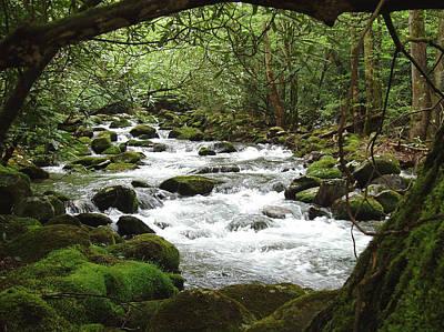 Greenbrier River Scene 2 Original by Nancy Mueller