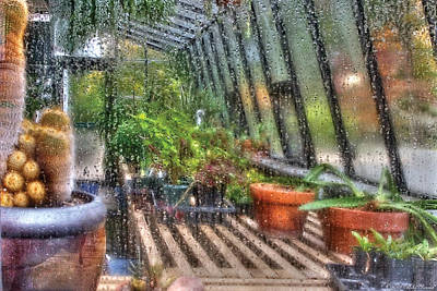 Rainy Day Photograph - Greenhouse - In A Greenhouse Window  by Mike Savad