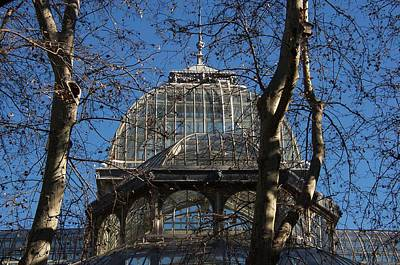 Photograph - Greenhouse In Madrid by David Resnikoff