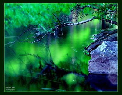 Greens 01 Art Print by William Bray