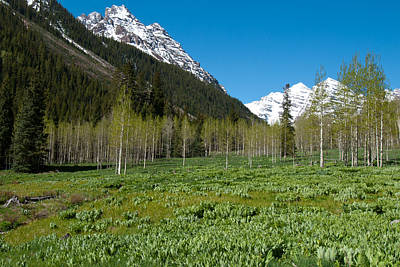 Photograph - Greens And Blues Of The Maroon Bells by Cascade Colors