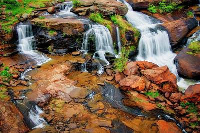 Photograph - Greenville's Reedy River Falls, South Carolina by Flying Z Photography by Zayne Diamond