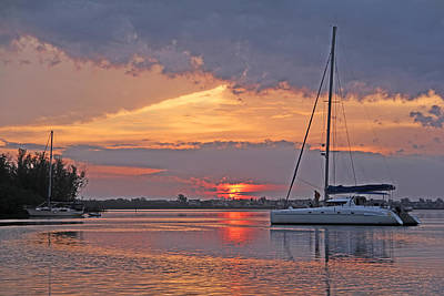 Photograph - Greet The Day by HH Photography of Florida