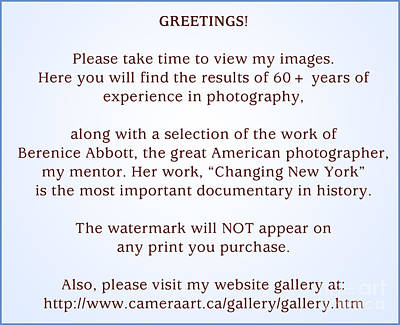 Photograph - Greetings by Lionel F Stevenson