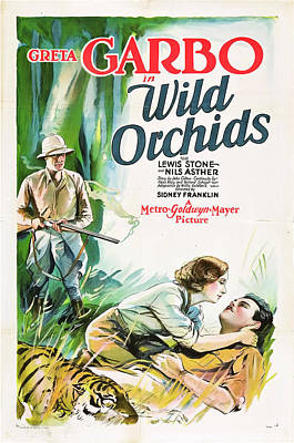 Orchid Drawing - Greta Garbo In Wild Orchids 1929 by Mountain Dreams