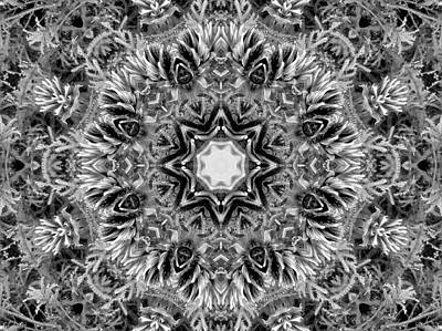Mixed Media - Grey And White Kaleidoscope by Nancy Pauling