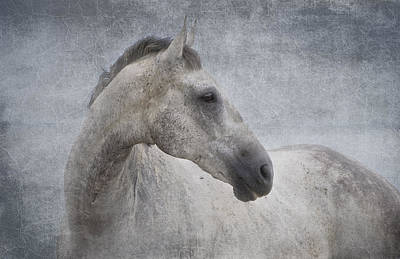 Photograph - Grey At The Beach Textured by Michelle Wrighton