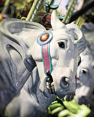 Photograph - Grey Carousel Horse Portrait by Jim And Emily Bush