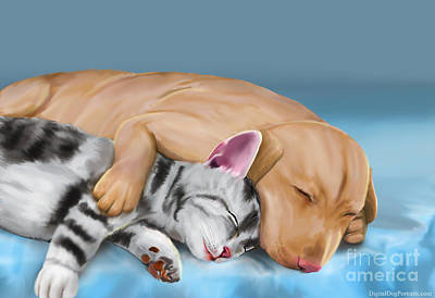 Cats And Dogs Digital Art - Grey Cat And Brown Dog Sleeping And Hugging by Idan  Badishi
