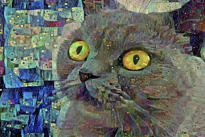 Photograph - Grey Cat On Blue Abstract Art by Peggy Collins