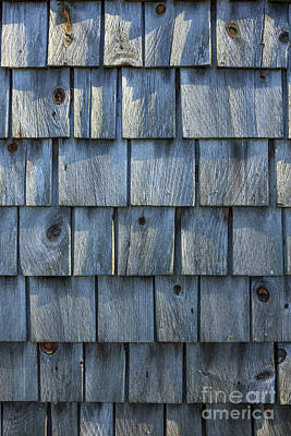 Photograph - Grey Cedar Shingles On An Old Barn by Edward Fielding