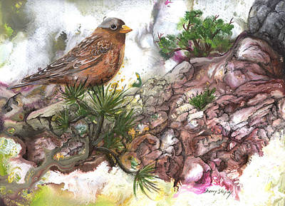 Art Print featuring the painting Grey Crown Rosy Finch by Sherry Shipley