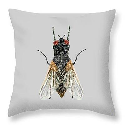Digital Art - Grey Fly Pillow by R  Allen Swezey