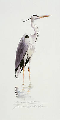 Painting - Grey Heron by Attila Meszlenyi