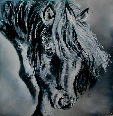 Painting - Grey Horse by Maris Sherwood