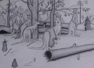 Kangaroo Drawing - Grey Kangaroos by Brian Leverton