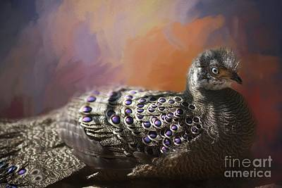 Pheasant Mixed Media - Grey Peacock-pheasant by Eva Lechner