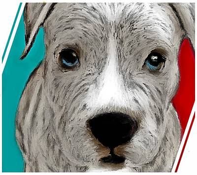 Digital Art - Grey Pit Pup by Barbara Chichester