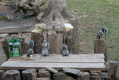 Photograph - Grey Tail Tales - Even The Chipmunks Getting Into The Drinking by Dan Friend