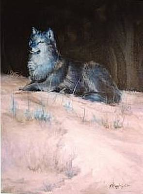 Painting - Grey Wolf Basking In The Sun by Naomi Dixon
