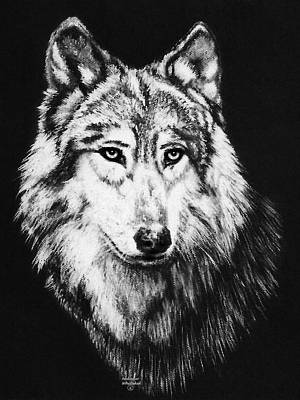Pastel - Grey Wolf by Melodye Whitaker