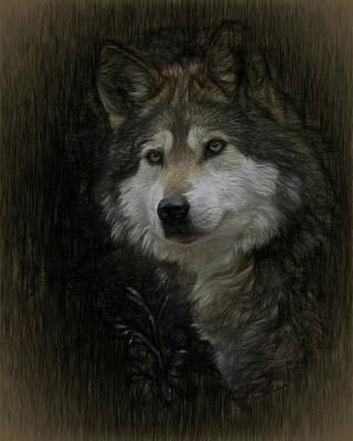 Digital Art - Grey Wolf Portrait 2 by Ernie Echols