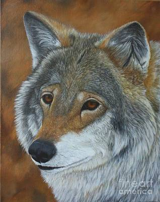 Wol Painting - Grey Wolf Portrait by Sid Ball
