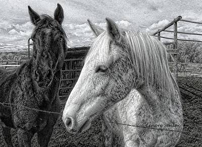 Photograph - Greyboy And Apache Drawing by Lenore Senior