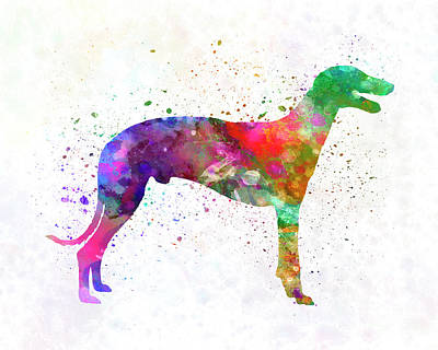 Greyhound In Watercolor Art Print by Pablo Romero
