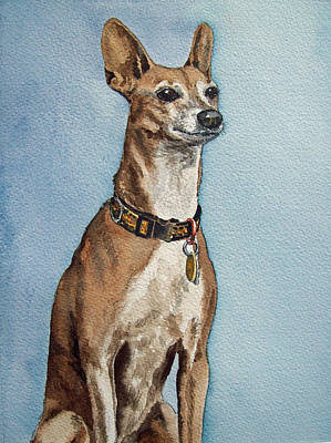 House Pet Painting - Greyhound Commission Painting By Irina Sztukowski by Irina Sztukowski
